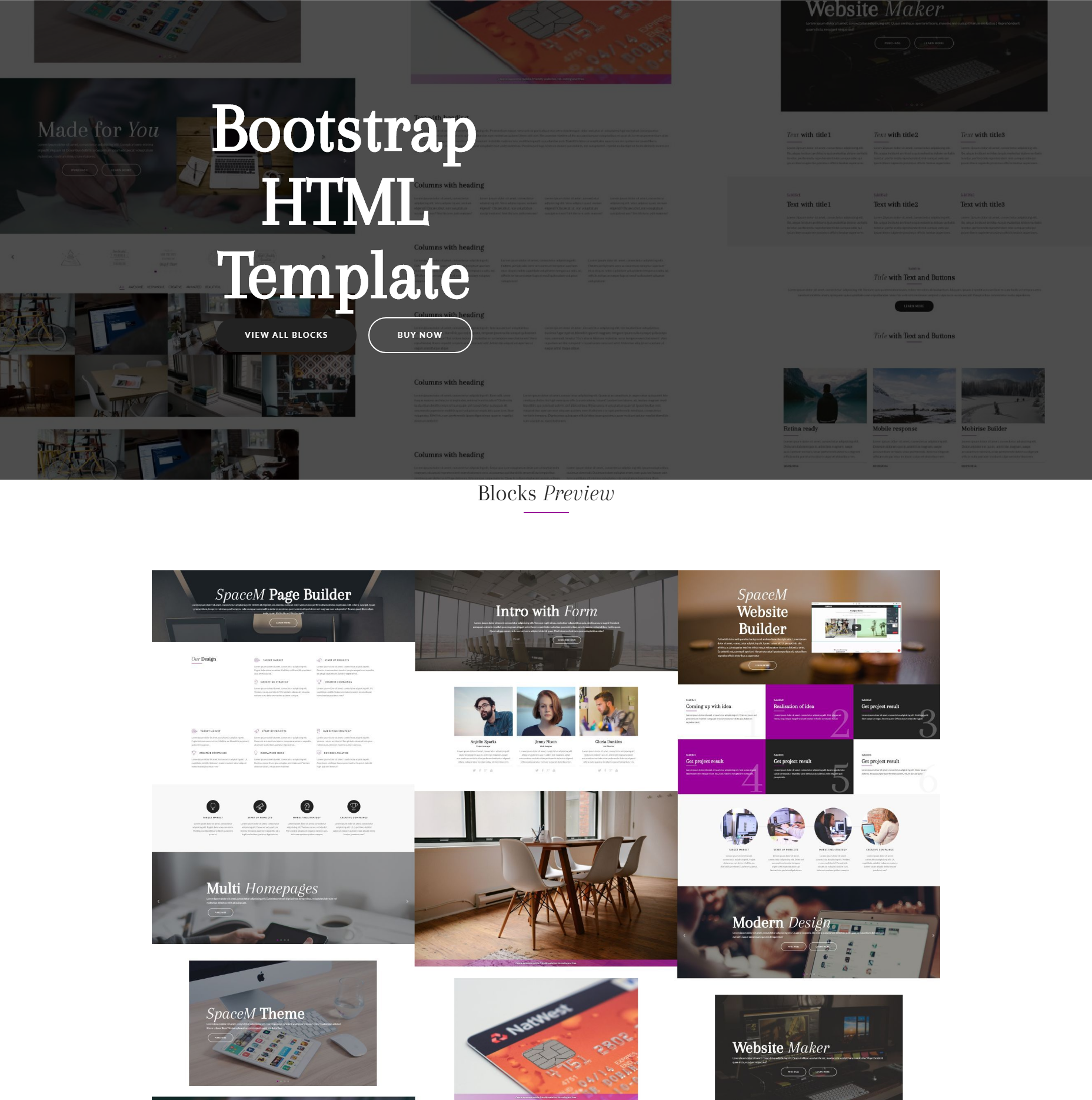Free Bootstrap SpaceM Templates