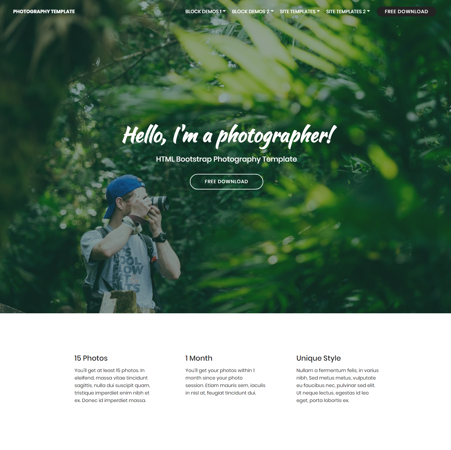 Free Bootstrap Photography Templates